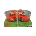 Citronella Small Candle Bucket - Twin Pack